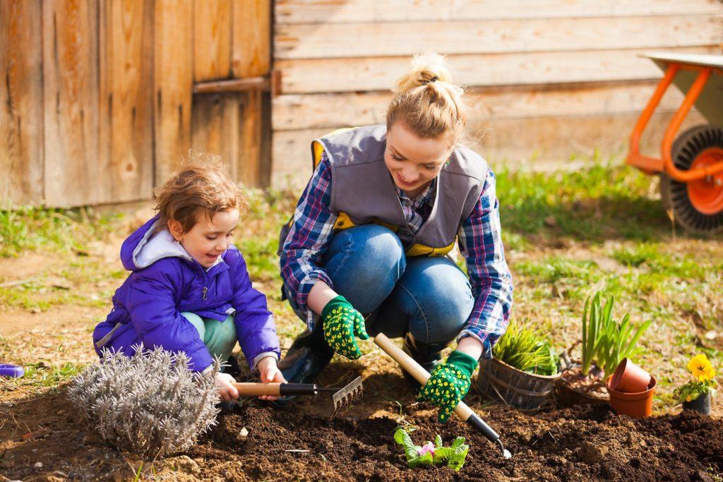 Gardening Activities Becoming A Poplar Hobby